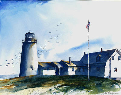 Painting - Sea Birds - Pemaquid Lighthouse by William Beaupre