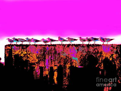 Photograph - Sea Birds Purple Sky by Expressionistart studio Priscilla Batzell