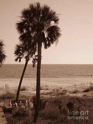 Relax Photograph - Sea Breeze by Megan Cohen