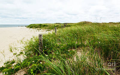 Sand Fences Photograph - Sea Breeze by Michelle Wiarda