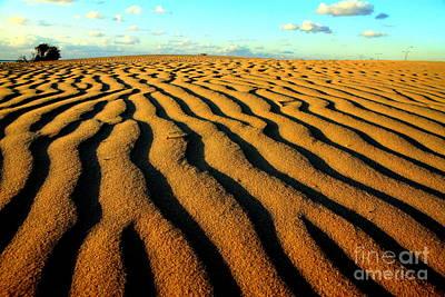 Sea Dune Original