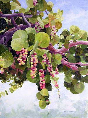 Fruit Tree Art Painting - Sea Grapes In Soft Light by Carol McArdle