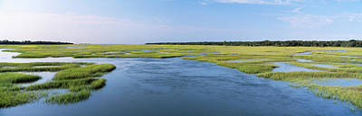 Sea Grass In The Sea, Atlantic Coast Art Print by Panoramic Images