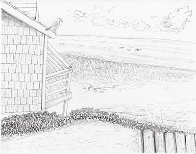 Drawing - Sea Gull Look Out by Jim Taylor