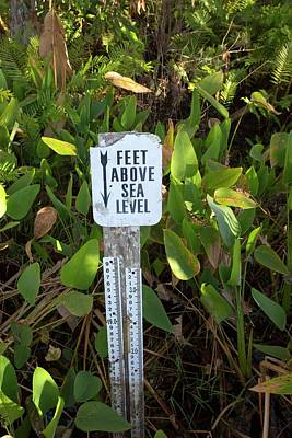 Florida - Usa Photograph - Sea Level Indicator by Jim West