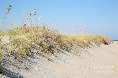 Sea Oat Serenity Art Print by Suzi Nelson