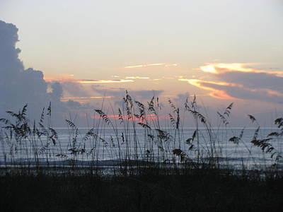 Photograph - Sea Oats At Sunrise by Ellen Meakin