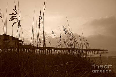 Photograph - Sea Oats In Sepia by Bob Sample
