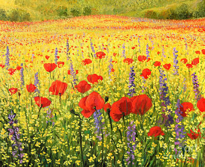 Poppies Fine Art Painting - Sea Of Blossom by Kiril Stanchev