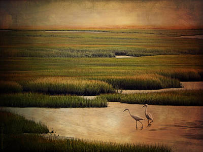 Sea Of Grass Art Print by Lianne Schneider