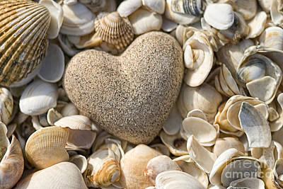 sea shell Heart Print by Boon Mee