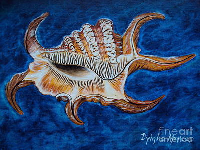 Sea Shell Original Painting Oil On Canvas No.3. Art Print by Drinka Mercep