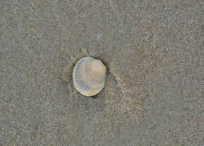 Sea Shell Sally Art Print by JAMART Photography