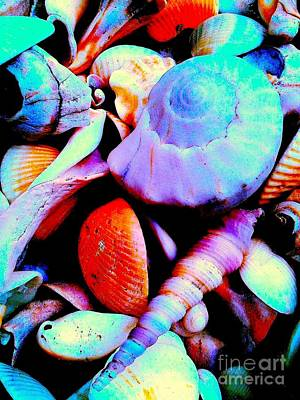 Sea Shells 5836 3 Art Print by Nina Kaye