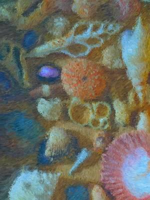 Interior Still Life Mixed Media - Sea Shells by Tom Druin