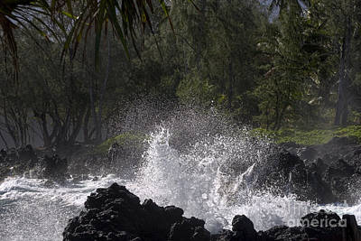 Photograph - Sea Spray by Ronald Lutz