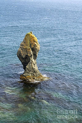 Photograph - Sea Stack by Liz Leyden