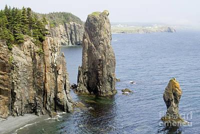 Photograph - Sea Stacks Newfoundland by Liz Leyden