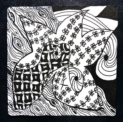 Chi Drawing - Sea Star by Beverley Harper Tinsley