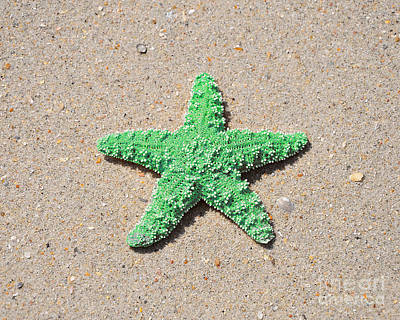 Sea Star - Green Art Print by Al Powell Photography USA