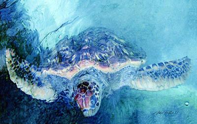 Sea Turtle Grand Cayman Original