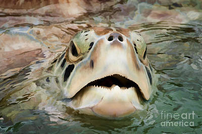 Photograph - Sea Turtle Poking Head Out Of Water by Dan Friend