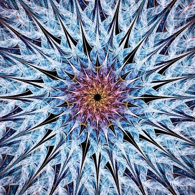Needle Digital Art - Sea Urchin by Anastasiya Malakhova
