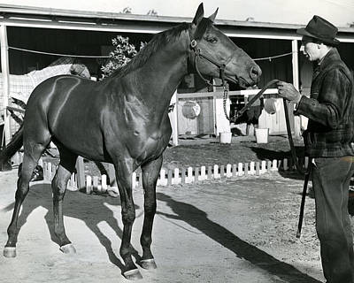 Quarter Horses Photograph - Seabiscuit Horse Racing #1 by Retro Images Archive