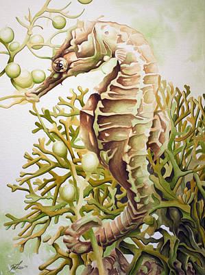 Seabiscuit Art Print