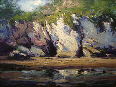 Seacaves At Pismo Beach Print by R W Goetting