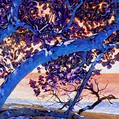 Painting - Seagrape Tree In Blue - Square by Lyn Voytershark