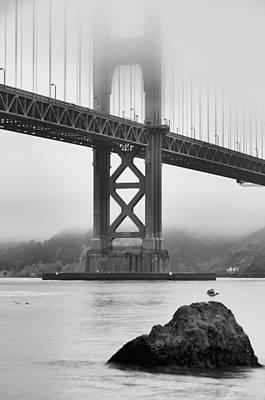 Photograph - Seagull And Bridge by Silvio Ligutti