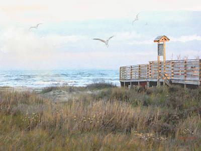 Seagull Beach Original
