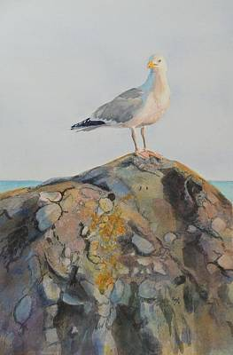 Majestic Seascapes Painting - Herring Seagull Brenton Point Newport Ri by Patty Kay Hall
