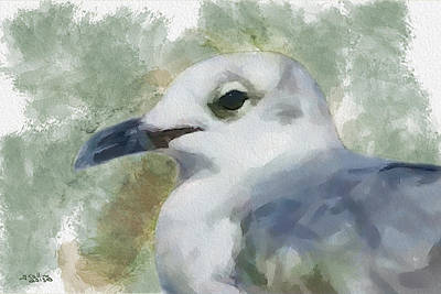 Art Print featuring the painting Seagull Closeup by Greg Collins