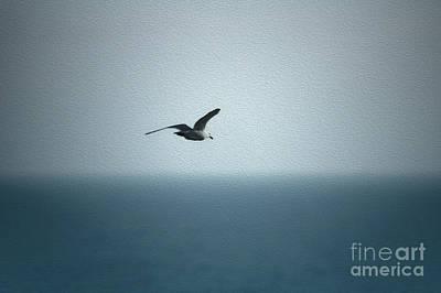 Digital Art - Seagull by Nur Roy
