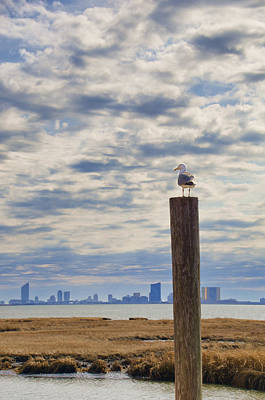 Photograph - Seagull Overlooking Atlantic City Nj by Beth Sawickie