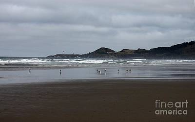 Photograph - Seagulls And Lighthouse by Erica Hanel
