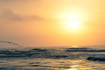 Photograph - Seagulls At Sunrise by Kay Lovingood