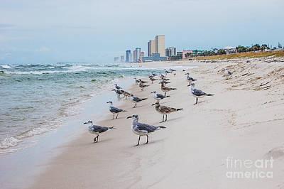 Seagulls Convention Art Print