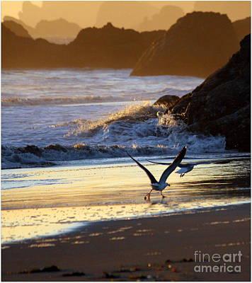 Seagulls On Beach Art Print by Irina Hays