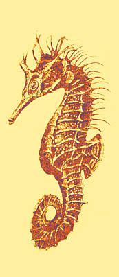 Digital Art - Seahorse - Right Facing by Jane Schnetlage