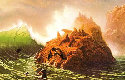 Seal Rocks--farallon Islands Art Print by Albert Bierstadt