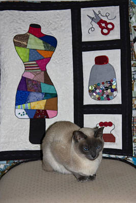 Wall Hanging Quilt Photograph - Seamstress Cat by Sally Weigand