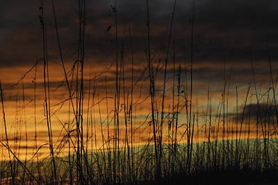 Digital Art - Seaoats Sunset by Michael Thomas