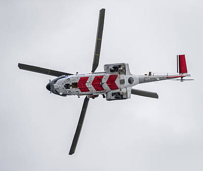 Puma Photograph - Search And Rescue Helicopter - Tf-lif by Panoramic Images