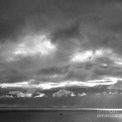 Photograph - Seascape With Gull by Paul Davenport