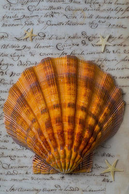Seashell And Words Art Print by Garry Gay