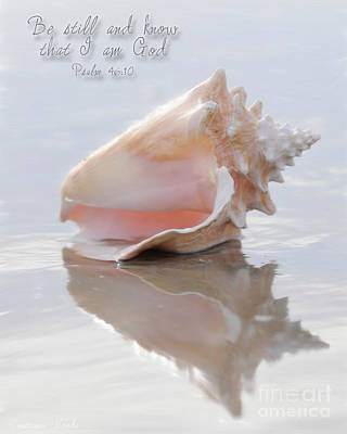 Prophetic Art Digital Art - Seashell Be Still by Constance Woods