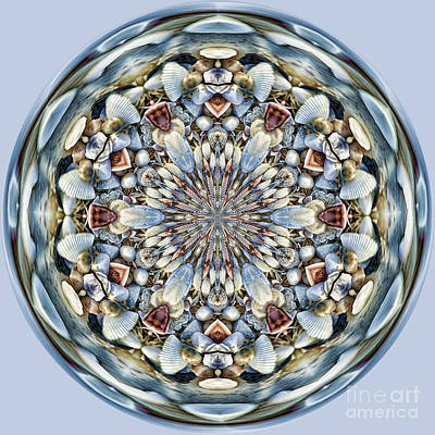Photograph - Seashell Orb by Cindi Ressler